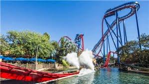 Sheikra Roller Coaster at Stanleyville