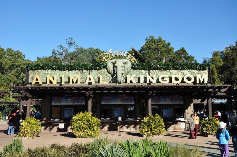 Guide to Disney's Animal Kingdom Park in Orlando