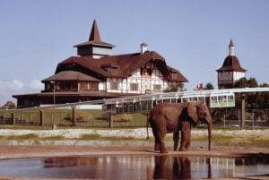Serengeti Overlook Pub dining at Egypt Region