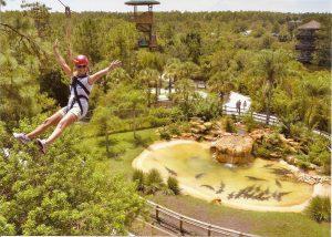 Screamin' Gator Zipline at Gatorland Orlando